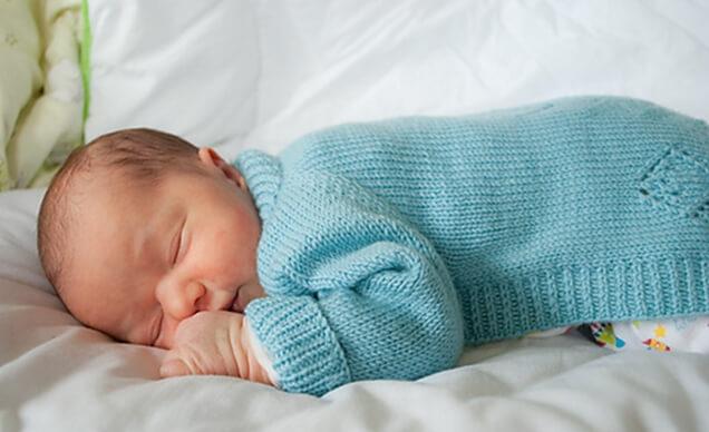 Newborn Vertebrae