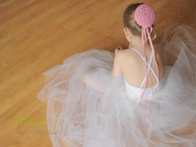 Ballerina Bun Cover