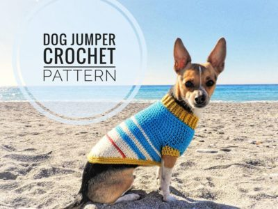 Varsity Doggie Jumper