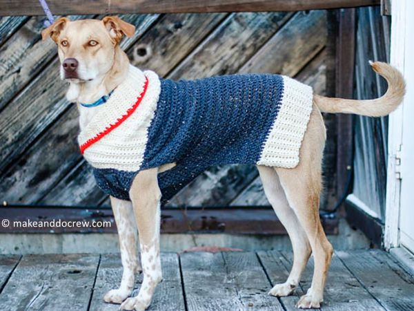 Ready to Roam Dog Sweater