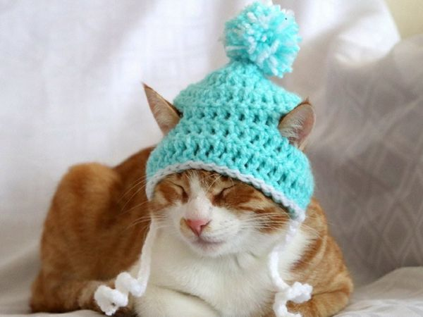 Crochet Cat Hat