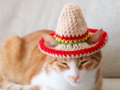 Crochet Cat Sombrero easy pattern