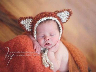 crochet Woodland Fox easy pattern