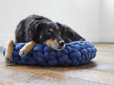 Finger Crochet Pet Bed free pattern