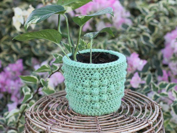 crochet DIAMOND PLANT COZY free pattern