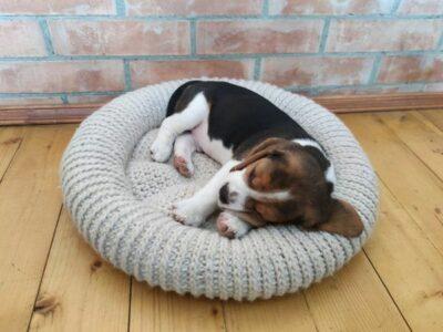 crochet Round Dog Bed easy pattern