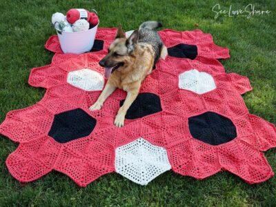 crochet Happy Hex Picnic Blanket free pattern
