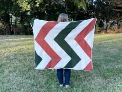 crochet Gander Throw free pattern