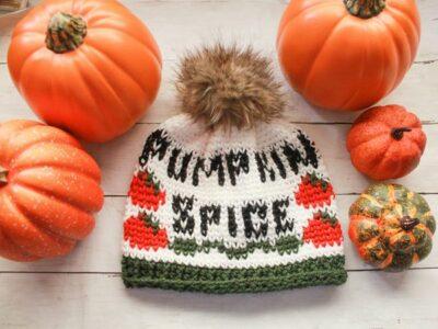 crochet Pumpkin Spice Beanie free pattern